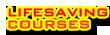 Lifesaving Courses Ireland 2
